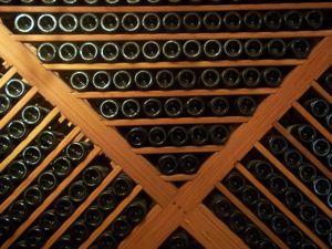 Bolivia Wine Tours in Tarija.