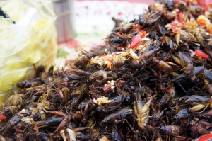 Roasted Crickets on the Border of Cambodia and Vietnam